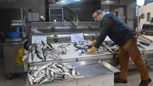 Sinopta soğuk hava balık tezgâhlarını vurdu