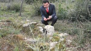 Çanakkalede 103 yıl sonra Şehit Üsteğmenin mezarı bulundu