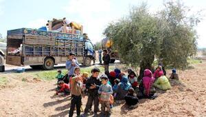 Afrinliler bölgenin teröristlerden temizlenmesini istiyor