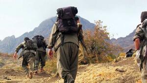 Türkiyeden Ermenistana terör örgütü PKK resti