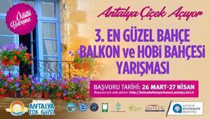 Büyükşehir en güzel bahçe ve balkonu seçecek