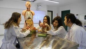 Daha sağlıklı eller için doktorlara kurs