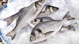 Amerika pazarında Türk balığına ilgi artıyor