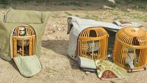 Ankarada canlı mühre ile keklik avlayanlara 12 bin 410 lira ceza