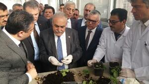 Bakan Fakıbaba: 15 ülkeye patates tohumu ihraç edeceğiz