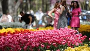 İstanbul Lale Festivali ne zaman başlayacak