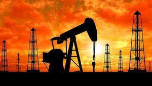 Başvuru kabul edildi O ilde petrol arayacaklar