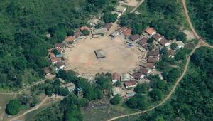 Peruda 240 bin futbol sahası büyüklüğünde orman alanı yok oldu