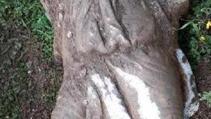 Kanal kazısından tarihi heykel çıktı