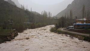Habur Çayı, tahta köprüleri yıktı, arsa ve patika yolları sular altında bıraktı