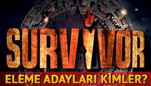Survivorda dokunulmazlık oyununu hangi takım kazandı Eleme adayları kimler oldu