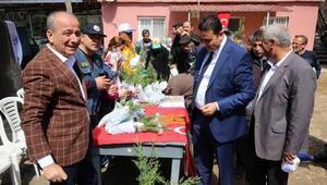 Hasanbyelide 800 fidan dağıtıldı
