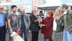 Ünlü isimlerden sokak hayvanları için 'Satın Alma Sahiplen' çağrısı