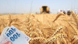 Tarımsal destek ödemeleri başlıyor