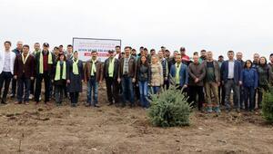 Bursada Afrin şehitleri anısına hatıra ormanı
