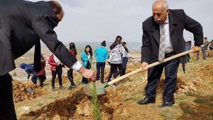 Balâ Belediyesi 10 bin fidanı toprakla buluşturdu
