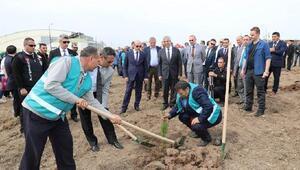 Şehit Savcı Mehmet Selim Kiraz Hatıra Ormanına fidan dikildi