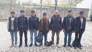 Vanda 36 kaçak yakalandı