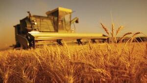 Tarım-ÜFE martta arttı