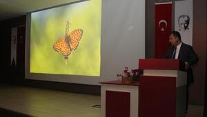 Türkiye'deki 420 kelebek türünden 230'u Van Gölü havzasında