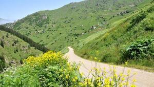 Yeşil Yolun yüzde 60ı tamamlandı