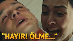 Vatanım Sensine Tuna Nehri akmam diyor türküsü damga vurdu