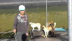 Gölete düşen köpekler ve kara kaplumbağaları kurtarıldı