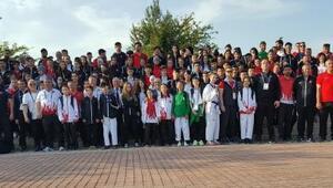 Türk tekvandoculardan 41 madalya