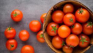 Rusyayla domates baharı