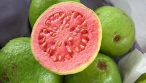 Guavanın faydaları neler Guava meyvesi nasıl tüketilir