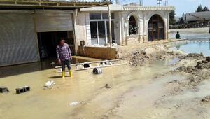 Nusaybinde taşkın mağduru esnaf yardım bekliyor