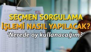 YSK seçmen kaydı sorgulama işlemi nasıl yapılır E-Devlet YSK seçmen kaydı sorgulama sayfası