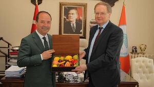 Edirne Belediye Başkanı Gürkan: AB'nin adalet mekanizmasını işletmesini istiyorum