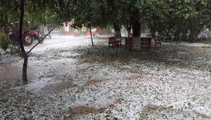 Şiddetli dolu yağışı, çifçiyi vurdu