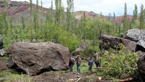 Dağdan kopan kayalar direkleri devirdi, bahçeye zarar verdi