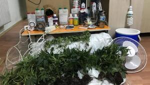 Yeşilovada uyuşturucu operasyonu