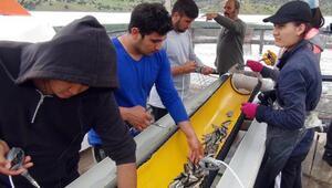 Eğitimlerini sürdürebilmek için balık aşılıyorlar