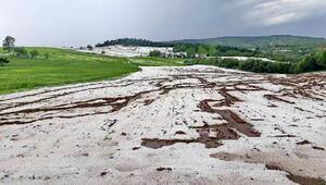 Kastamonu Taşköprüde dolu yağışı sarımsak tarlalarına zarar verdi