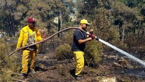 Kuyucaktaki yangında 25 hektarlık alan zarar gördü
