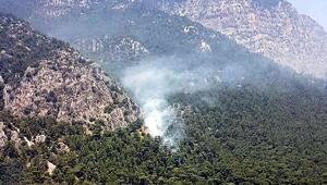 Ulada orman yangını (2)
