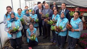 Süleymanpaşanın Serada çiçekçilik projesi başladı