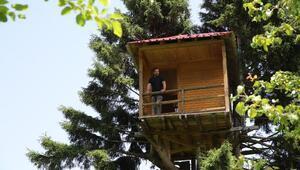Çam ağacına yaptığı eve çıkmak cesaret istiyor