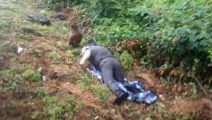 Hopada yavru ayı kurtarma operasyonu