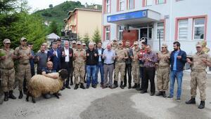 Karadenizde öldürülen 2 PKKlı terörist önce fotokapana yakalanmış (3)