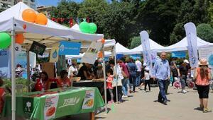 Türkiyenin çevrecileri Kadıköy Çevre Festivalinde bir araya geldi