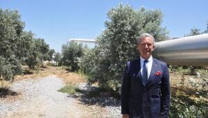 Güriş Holding: Ağaçlardaki kuruma artezyen suyundan kaynaklı