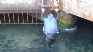 Denizde kurtarılmayı bekledi