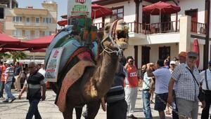 Aydında jeotermale karşı develi protesto