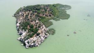13 milyon liraya sahibinden satılık ada