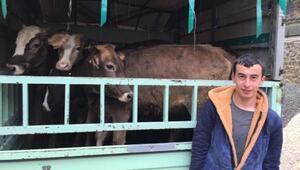 Giresun'da genç çiftçilere destek